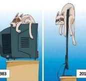 Cats Dislike Technological Advances