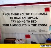 Too Small To Have An Impact