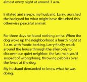 A Dog Began Barking Every Night Around The Same Time. His Owners Didn't Know Why.