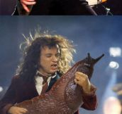 Guitars Replaced With Slugs