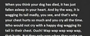 Why Dogs Never Actually Die. This Guy Nails It.