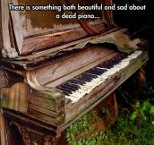 Death Of A Piano