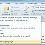 ms-word-translation