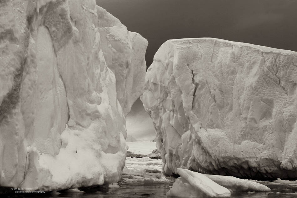 antarctica33 Stunning Photographs Capturing the Beauty of Antarctica
