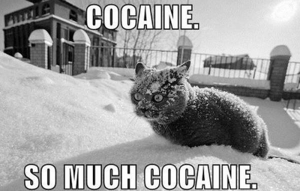Musiques et personnages - Page 6 Cocaine