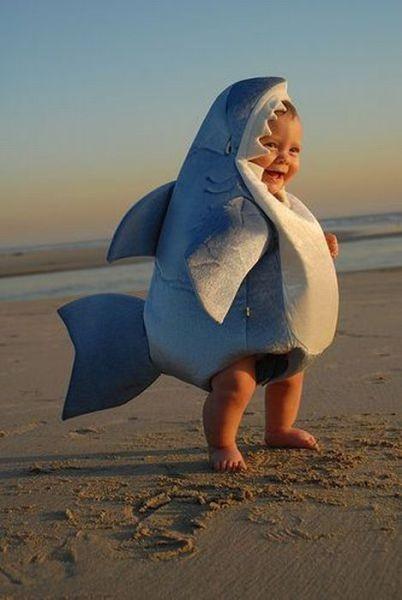cutest shark ever