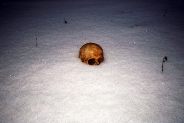 snow skull 630x423 Snow Skull is Everybodys Nightmare