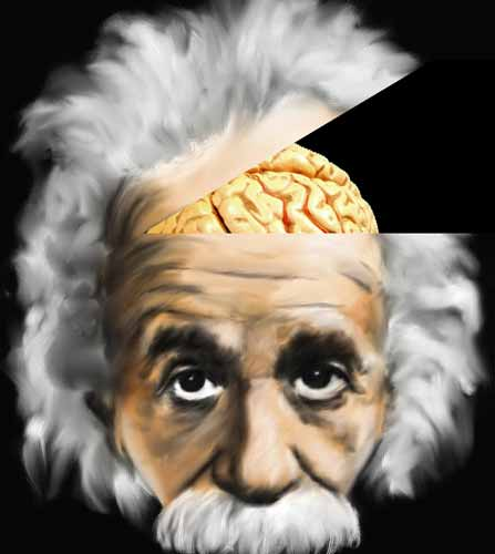 Albert Einstein brain body part Where Are the 10 Most Famous Body Parts of Popular Public Figures?