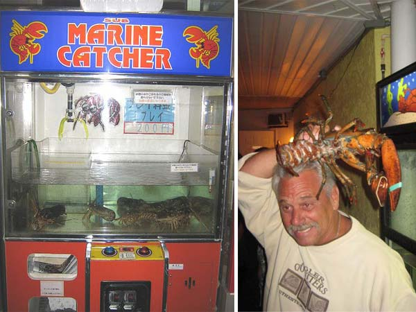 vending machine lobster 10 Vending Machines that Carry Unusual Things