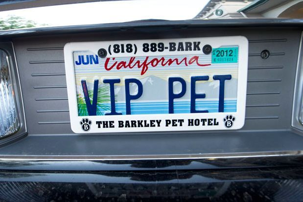 Barkley Dog Hotel California 13 Weird Places: The Barkley Luxury Pet Hotel in California