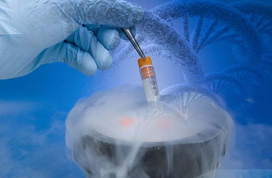 fertilization 10 Most Horrible Medical Mistakes Made by Doctors