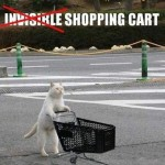 Invisible Cat 01