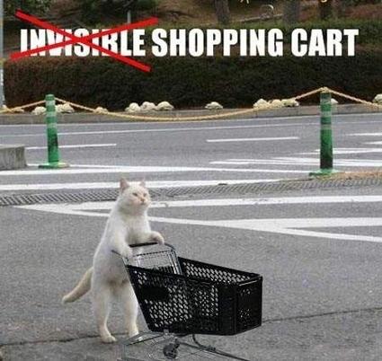 Invisible Cat 01