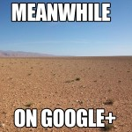 Meanwhile... on Google+
