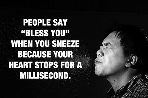 Sneeze 20 Mind Blowing Facts You Probably Didnt Know
