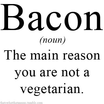Bacon 25 Hilarious Real Life Definitions of Common Words and Phrases 