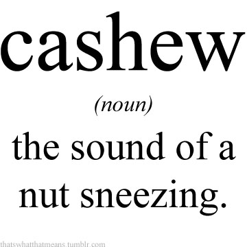Cashew 25 Hilarious Real Life Definitions of Common Words and Phrases 