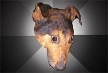 depression-dog-thumb