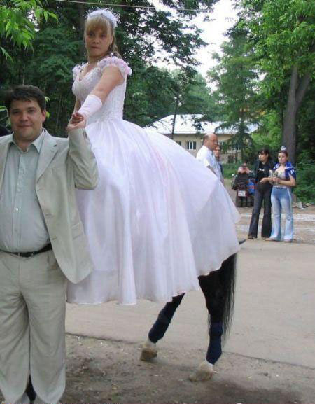 Centaur WTF Pic Dump   Photos in Extreme Need of Context