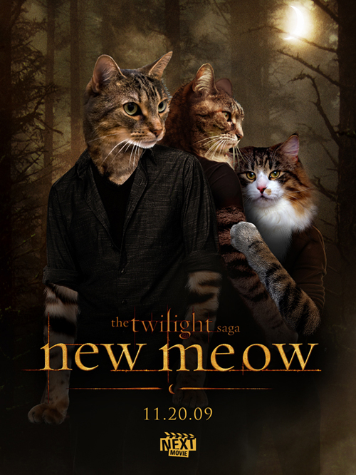 New Meow A Treat for All Twilight Haters (10 Sarcastic Posters)