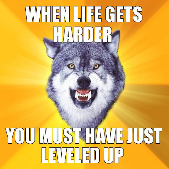 When life gets harder Courage wolf Return of the Wolfpack: Top 15 Courage and Insanity Wolf Memes