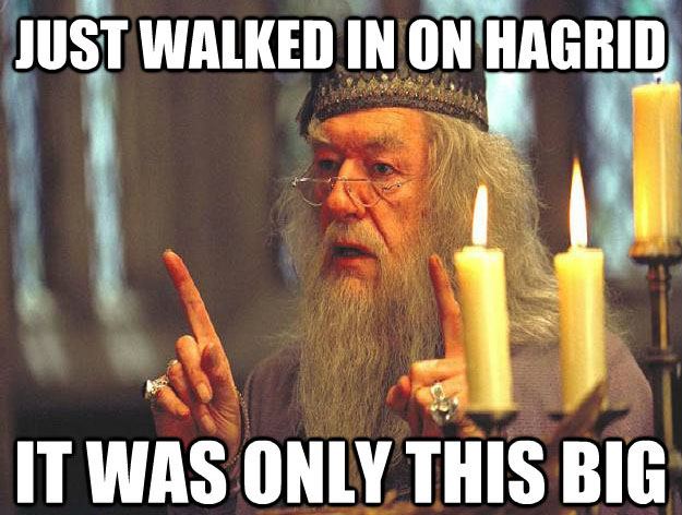 just walked in on hagrid Scumbag Dumbledore: Hilarious Dumbledore Memes That Make His Douchery Shine