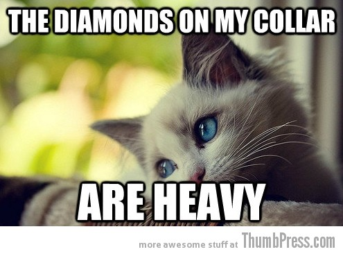 First World Problems Cat 20 Sad Cat Is Sad: 25 Hilarious First World Problems Cat Meme