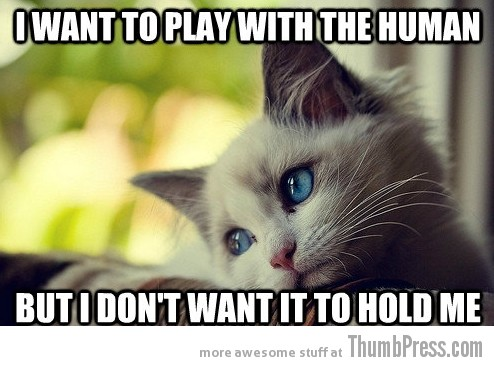 First World Problems Cat 23 Sad Cat Is Sad: 25 Hilarious First World Problems Cat Meme