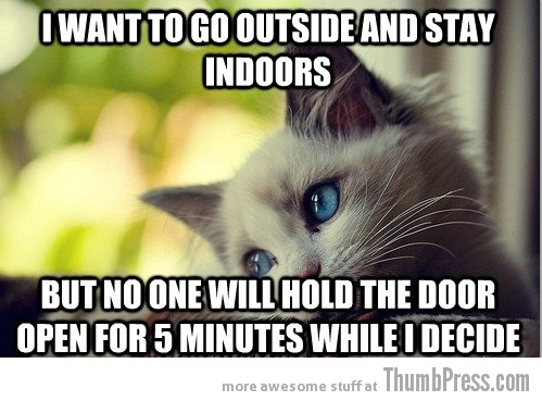 First World Problems Cat 3 Sad Cat Is Sad: 25 Hilarious First World Problems Cat Meme