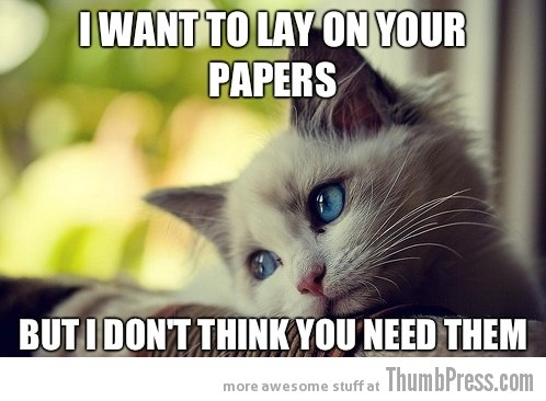 First World Problems Cat 9 Sad Cat Is Sad: 25 Hilarious First World Problems Cat Meme