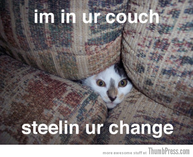 In your couch 630x512 Caption Cats: 25 Hilarious Cat Photos Spiced up With Even Funnier Captions