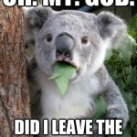Koala Bear - Meme - 10