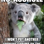 Koala Bear - Meme - 6