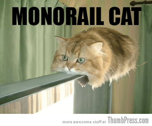 Monorail cat Caption Cats: 25 Hilarious Cat Photos Spiced up With Even Funnier Captions