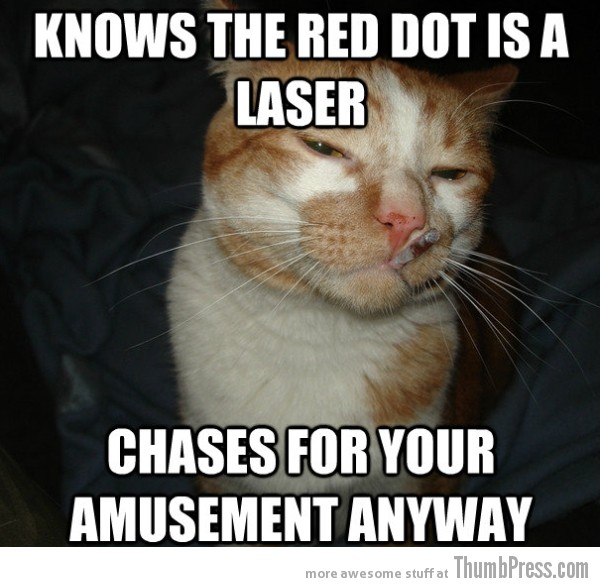 Cool Cat Craig 7 As Cool As It Gets: Awesome Cool Cat Craig Memes (16 PICS)