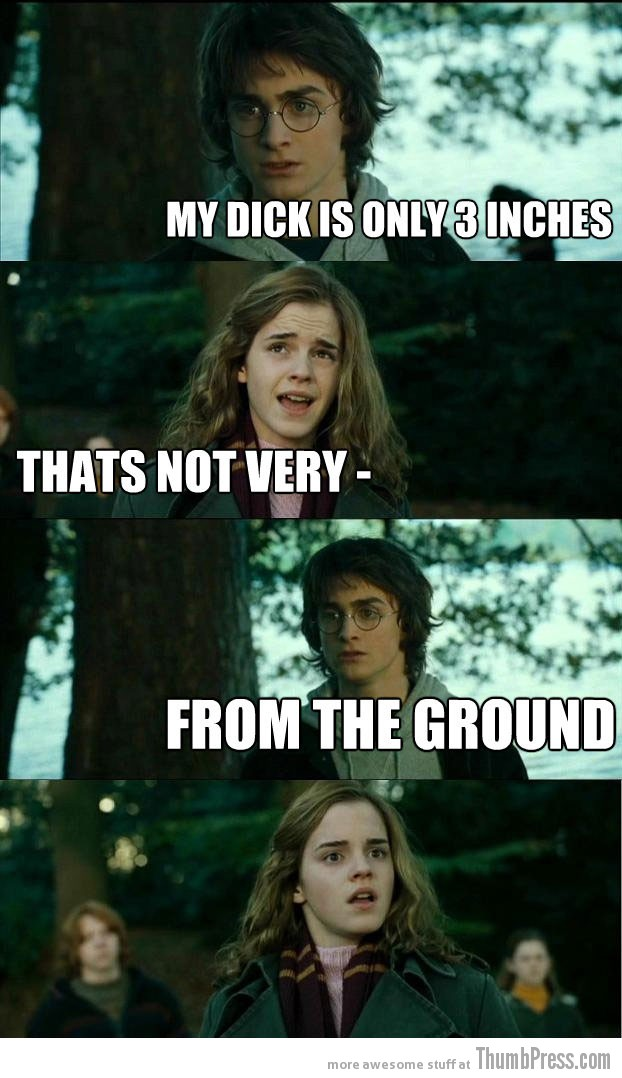 From the ground Horny Harry: Hilarious Harry Potter Memes that make Hermoine Cringe (20 Pics)