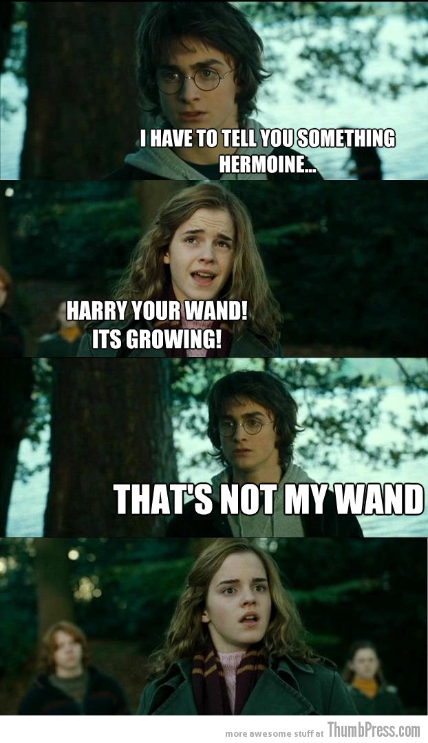 Not my wand Horny Harry: Hilarious Harry Potter Memes that make Hermoine Cringe (20 Pics)