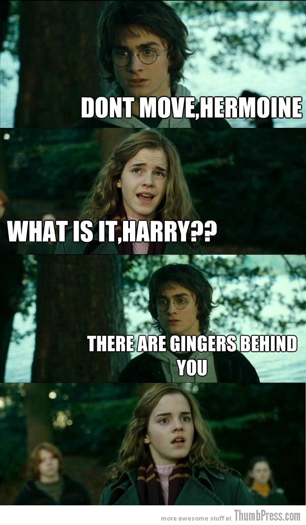 What is it Harry Horny Harry: Hilarious Harry Potter Memes that make Hermoine Cringe (20 Pics)