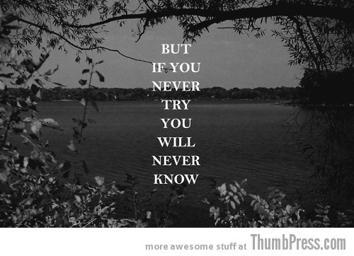 If you never try you never know Inspiring Words: Your Required Dose of Motivation to Get You Through (25 Pics)