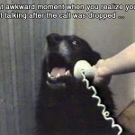 Awkward phone call