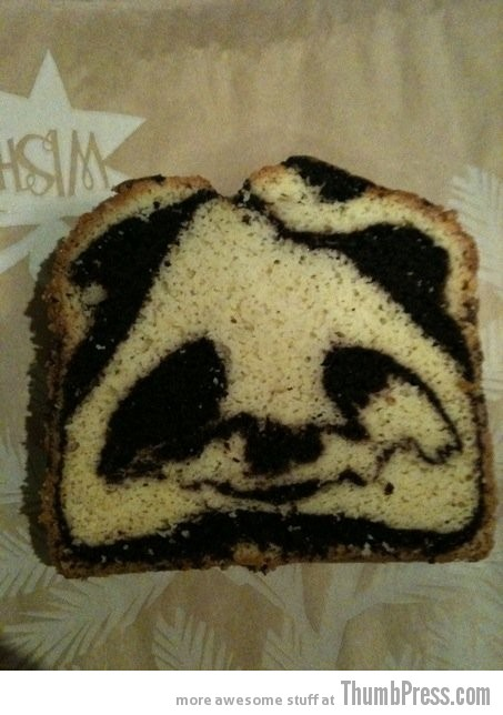 Panda loaf Theyre watching you!!   Finding Weird Faces in Inanimate Objects