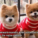 Same sweater