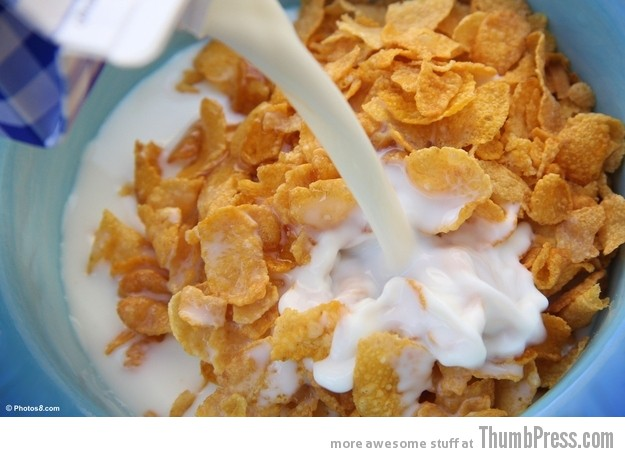 Achieving the perfect milk to cereal ratio Everyday Pleasures: 30 Little Things That Feel Real Good