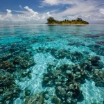 Coral Reefs of South Water Caye, Belize
