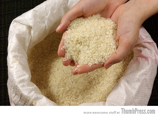 Dipping your hand into a deep bag of uncooked rice