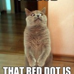 Red dot