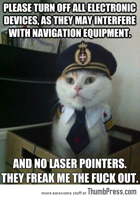 Captain kitteh 21 Different Animal Memes: When Animals Unlock Level Awesome