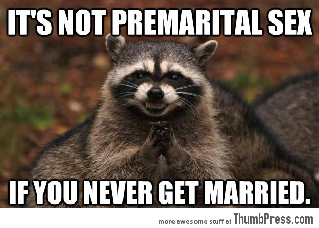 Evil Plotting Raccoon 21 Different Animal Memes: When Animals Unlock Level Awesome