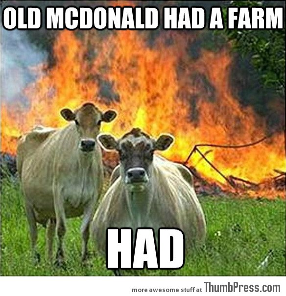 Evil cows 21 Different Animal Memes: When Animals Unlock Level Awesome