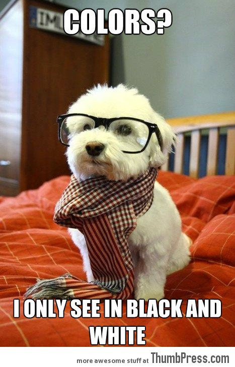 Hipster Dog 21 Different Animal Memes: When Animals Unlock Level Awesome